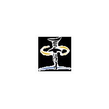 AMI_Logo_Square