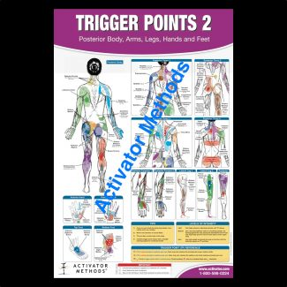 Posterior Trigger Points